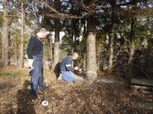 Fleißige Baumfäller