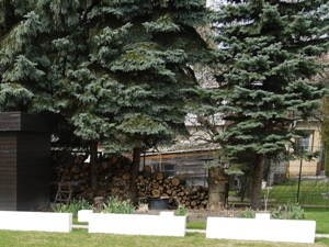 so sah der Holzstapel letzten Sommer aus